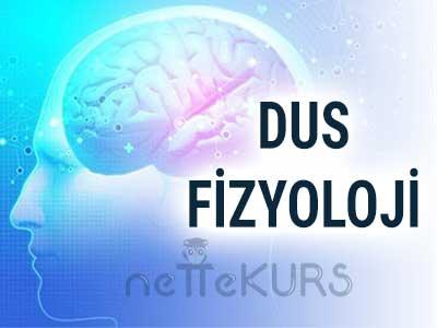 DUS Fizyoloji Video Ders
