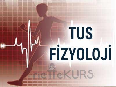TUS Fizyoloji Video Ders