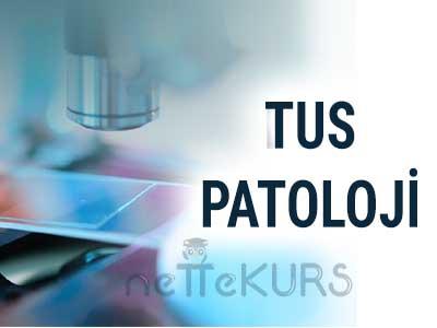 TUS Patoloji Video Ders